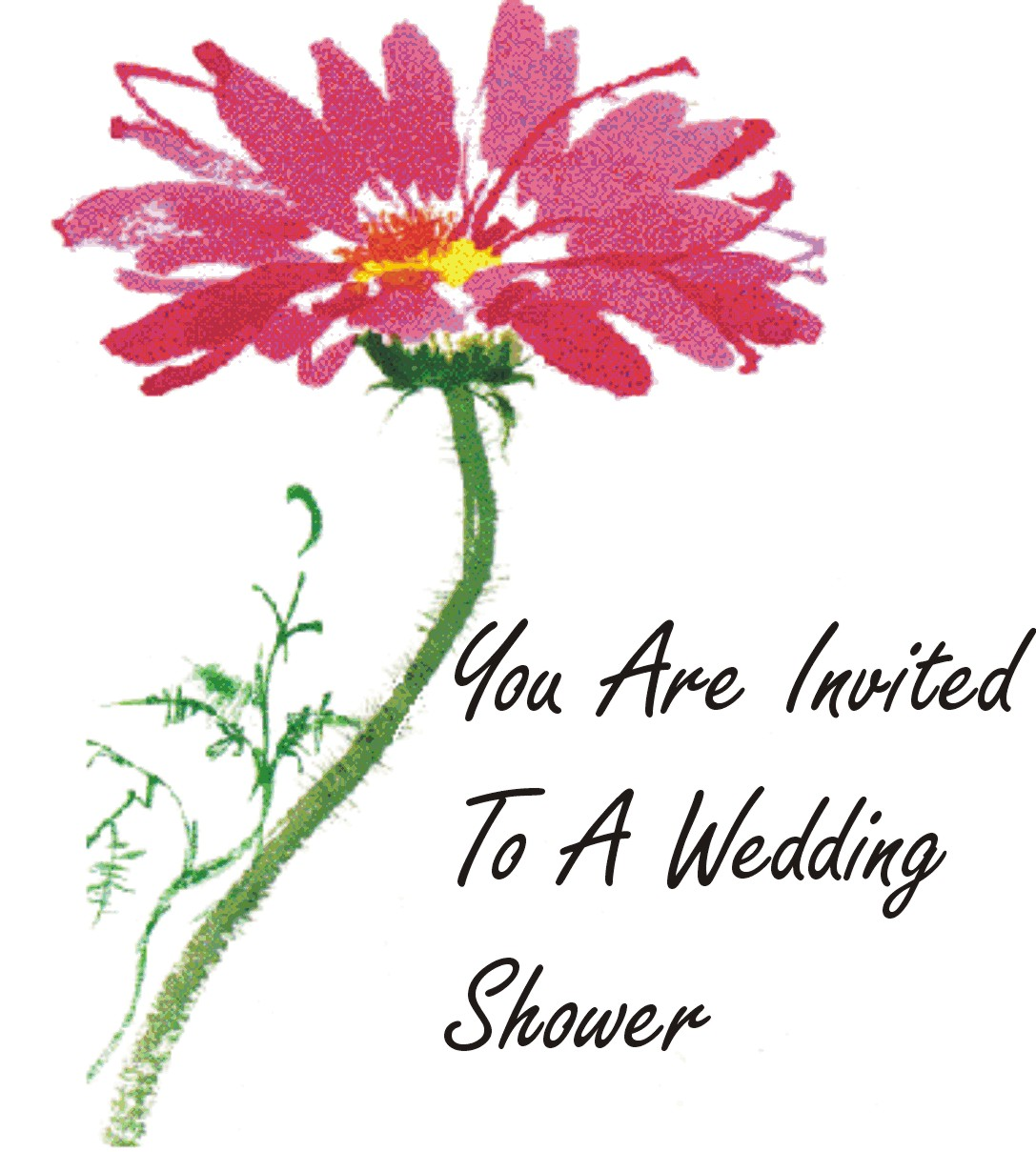 Wedding Shower For Two Women